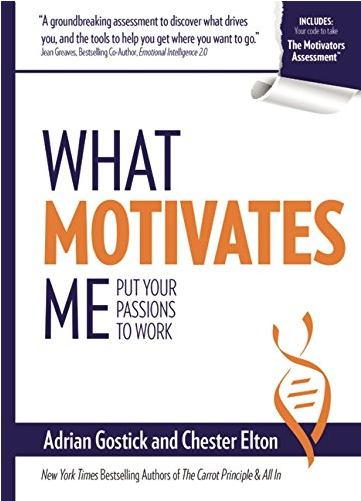 What-motivates-me--put-your-passions-to-workjpg-original