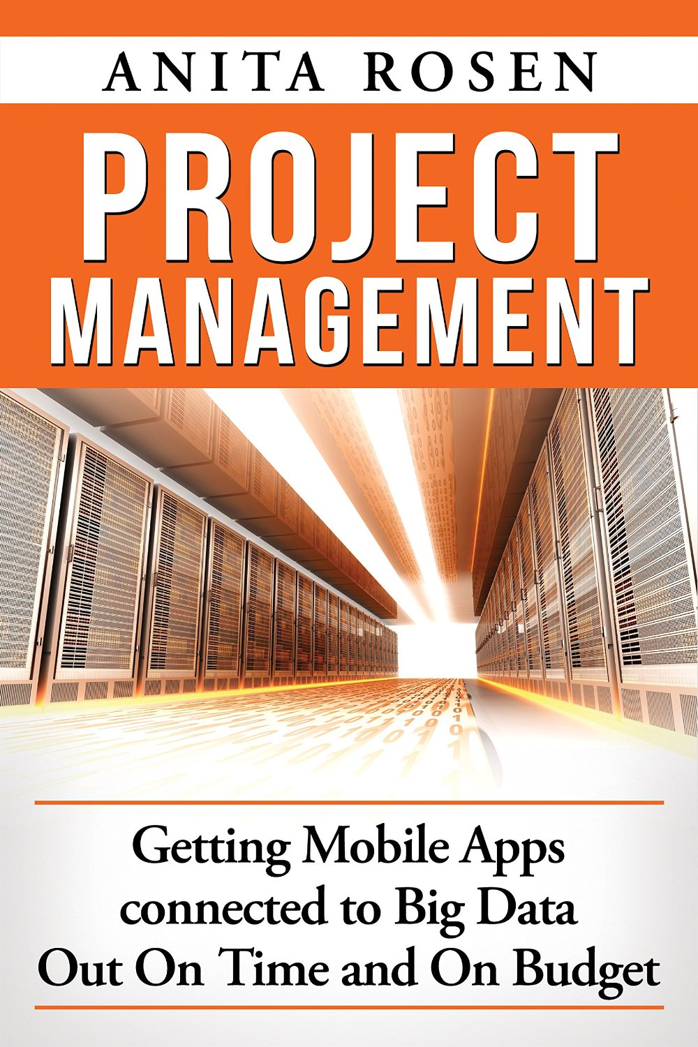 Project-management--getting-mobile-apps-connected-to-big-data-out-on-time-and-on-budgetjpg-original